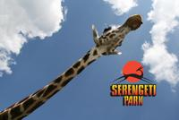 2010 - Affensafari Serengetipark