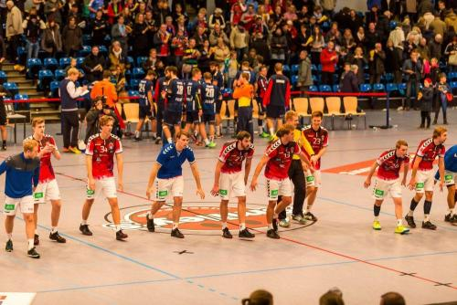 HSV-Flensburg-2016-11-13-053